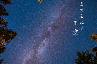 冯小枫-《当你忘记了星空》