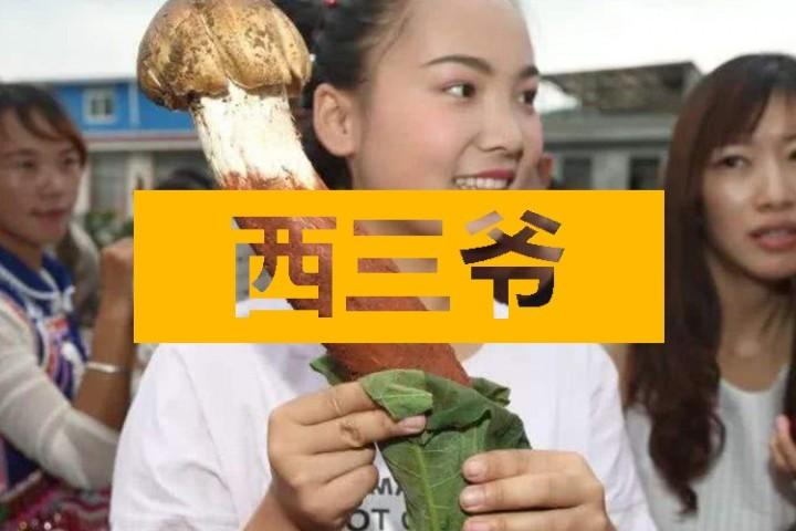 在云南吃蘑菇吃到中毒致幻,是种什么体验?